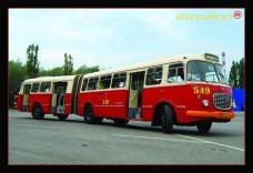 Pocztówka autobus Jelcz 021